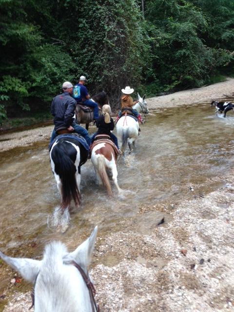 Brushy Creek 2
