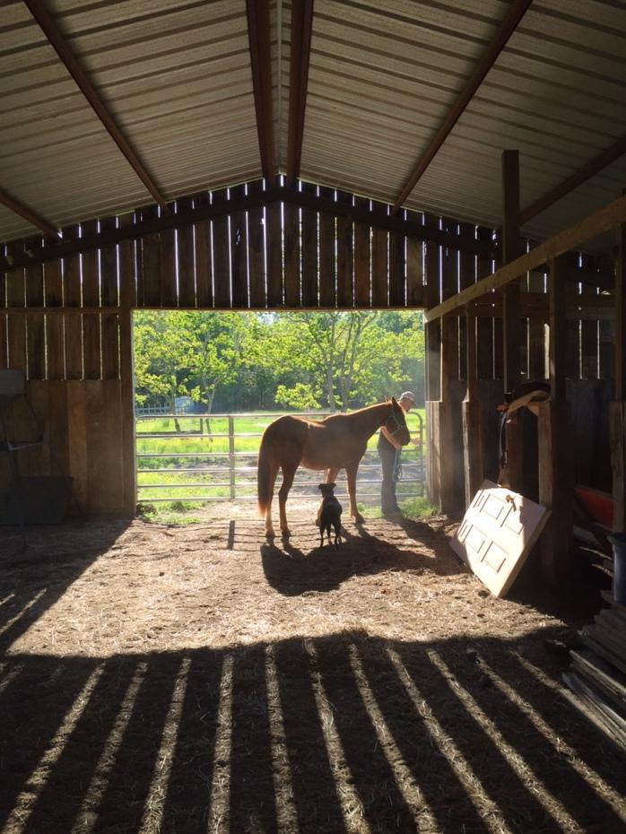 Sparkle & Abby
