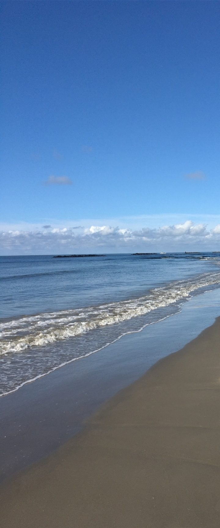 Morning Walks 2 - Grand Isle 2016