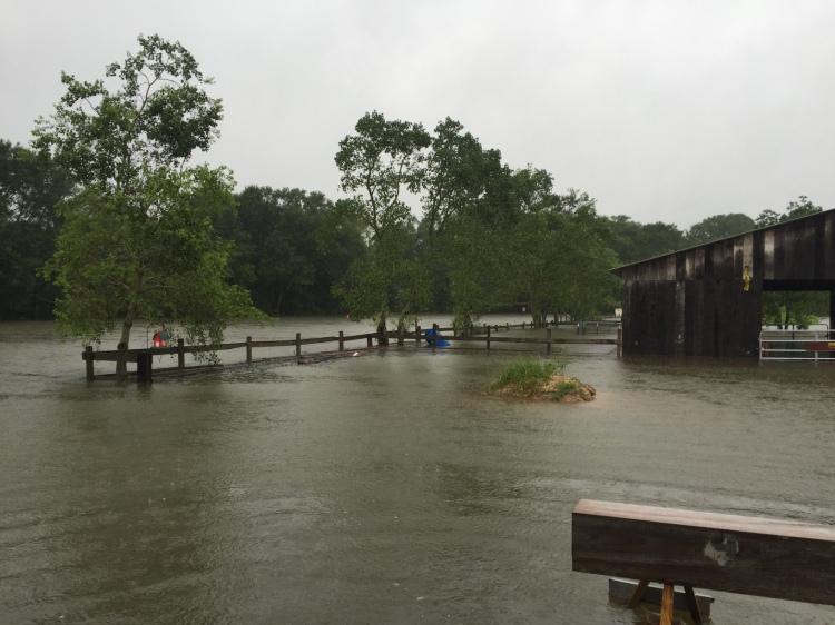 Flooded Side Pasture