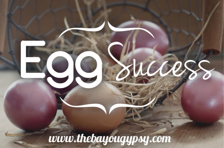 egg-success