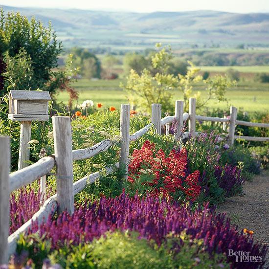 country-garden-1