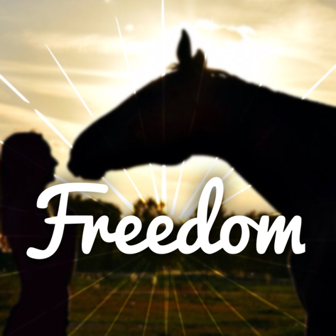 freedom-graphic