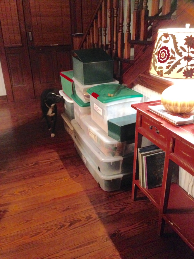 christmas-decoration-boxes