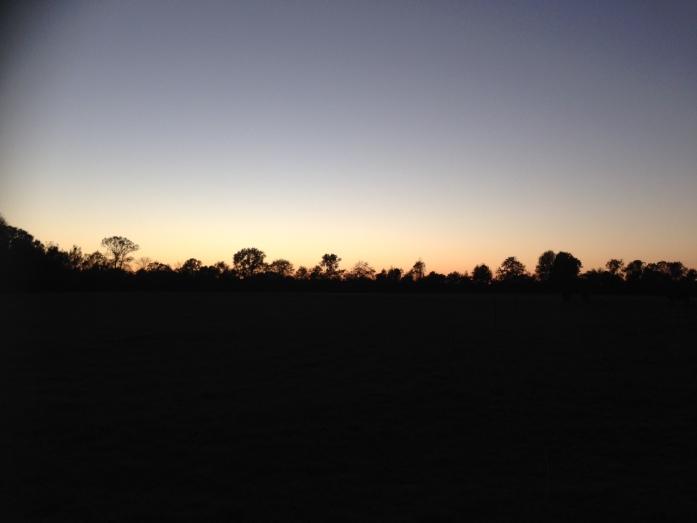 farm-sunset