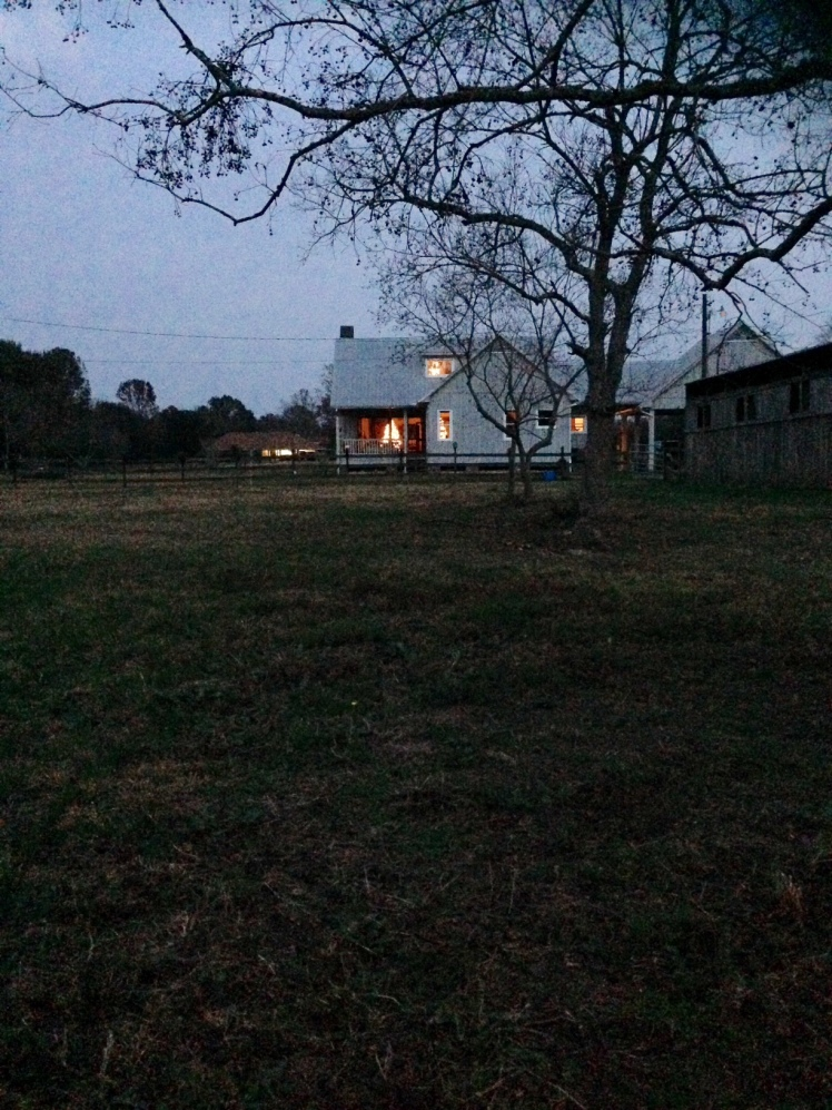 house-from-pasture-2