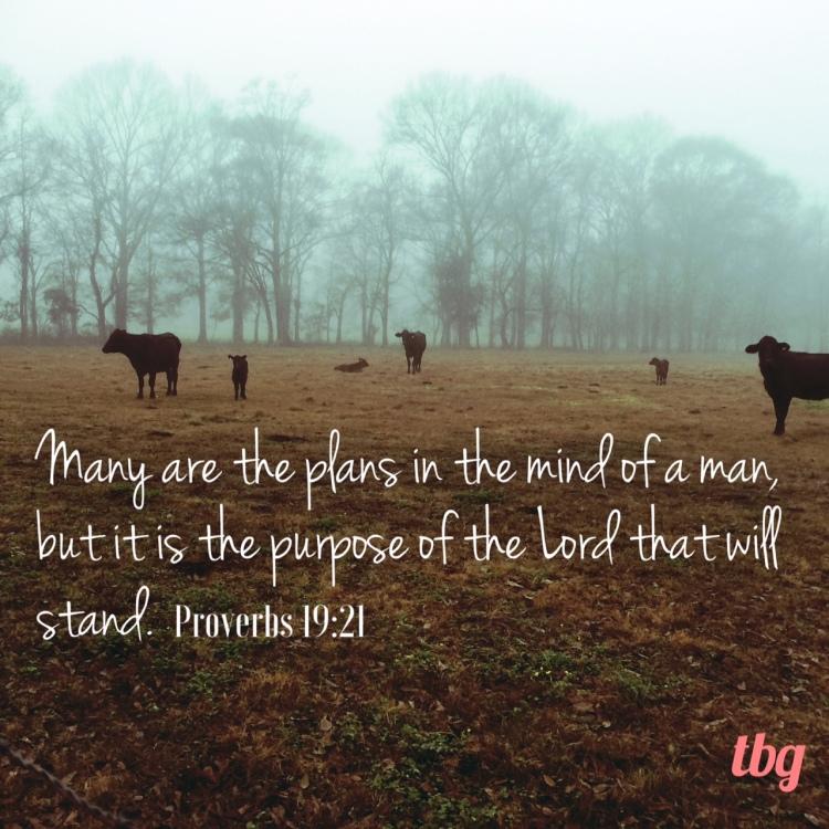 proverbs-19-20