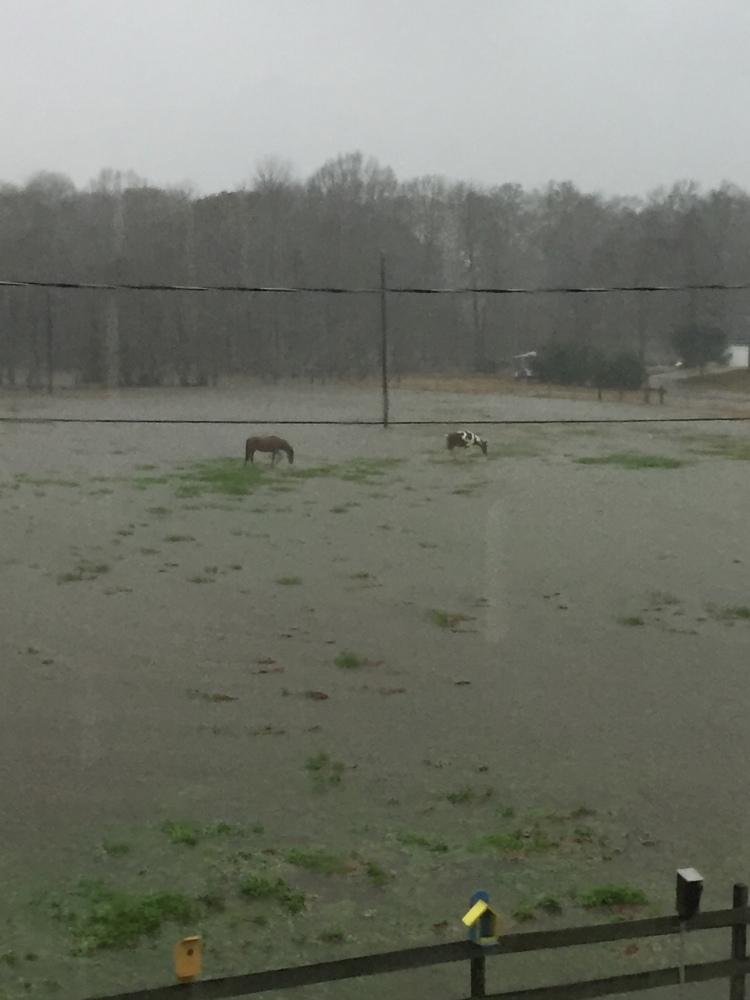 winter-flooding-5