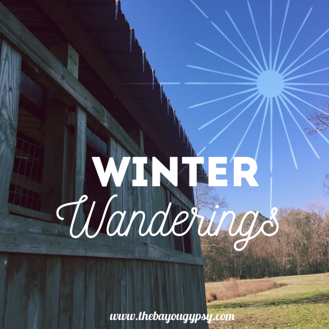 winter-wanderings-graphic