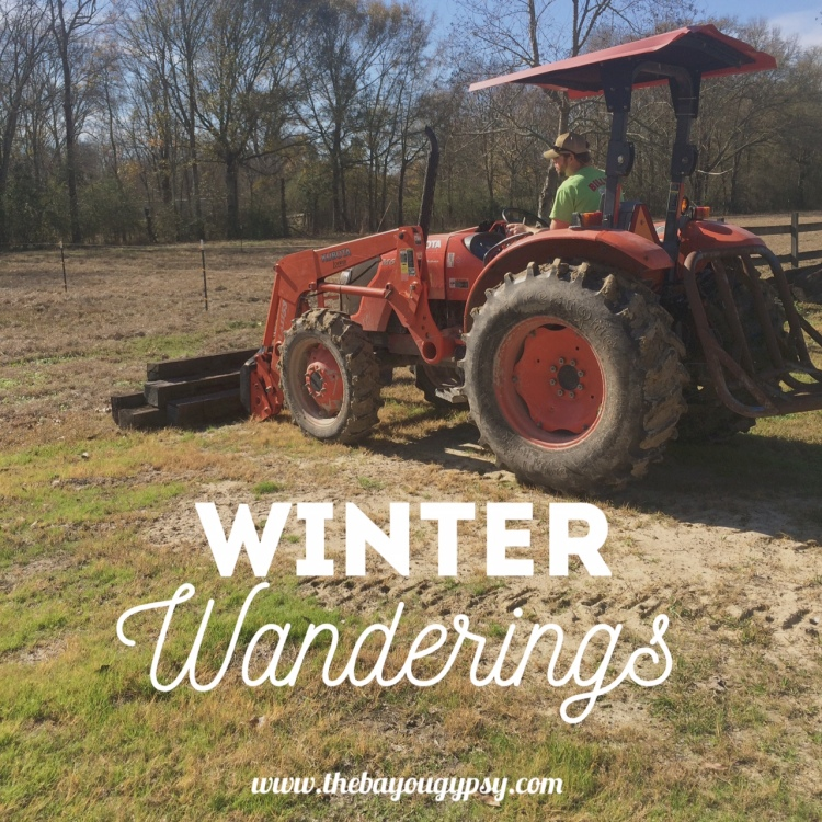 winter-wanderings-part-2-graphic