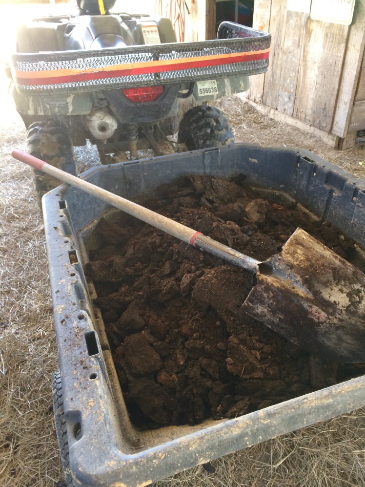 manure-compost