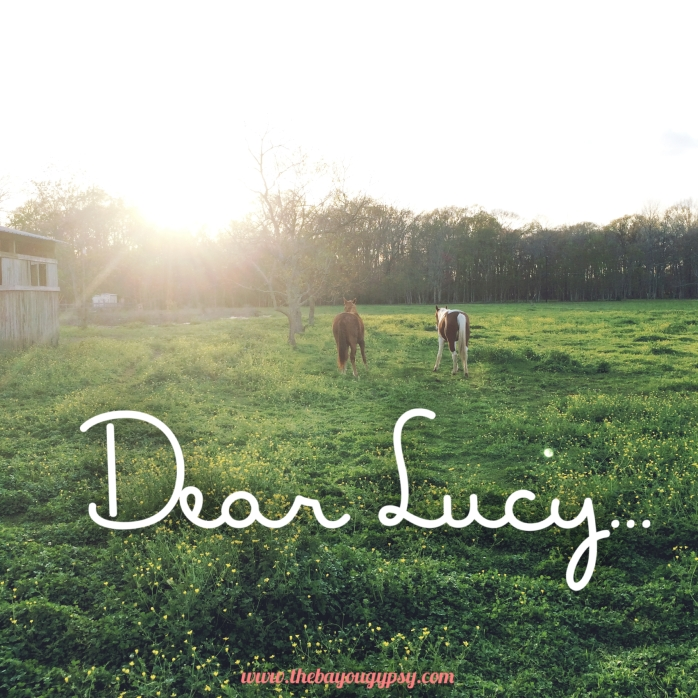 Dear Lucy Graphic