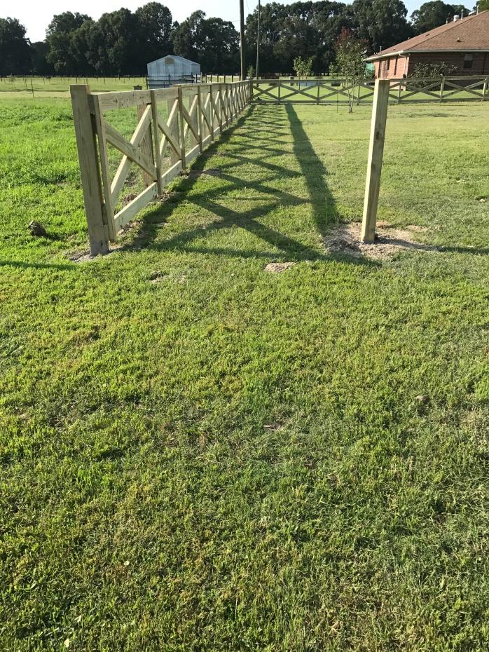 Day 3 Fence Progress 7