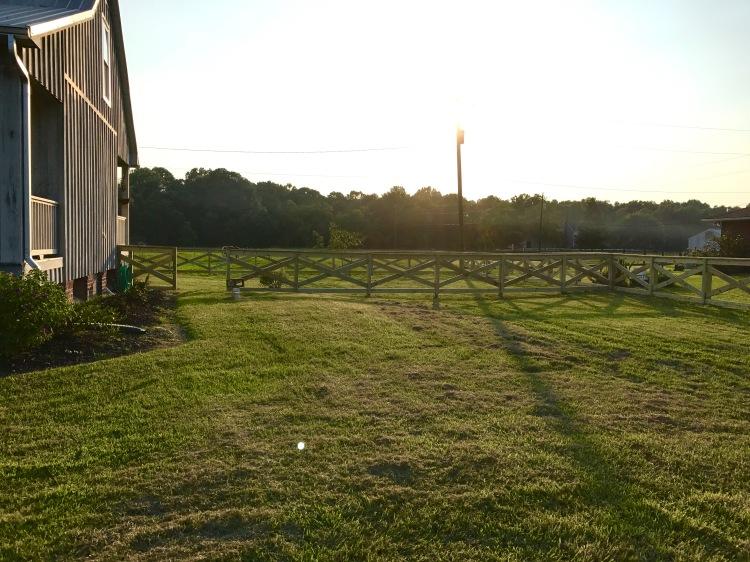 Day 3 Fence PRogress 8