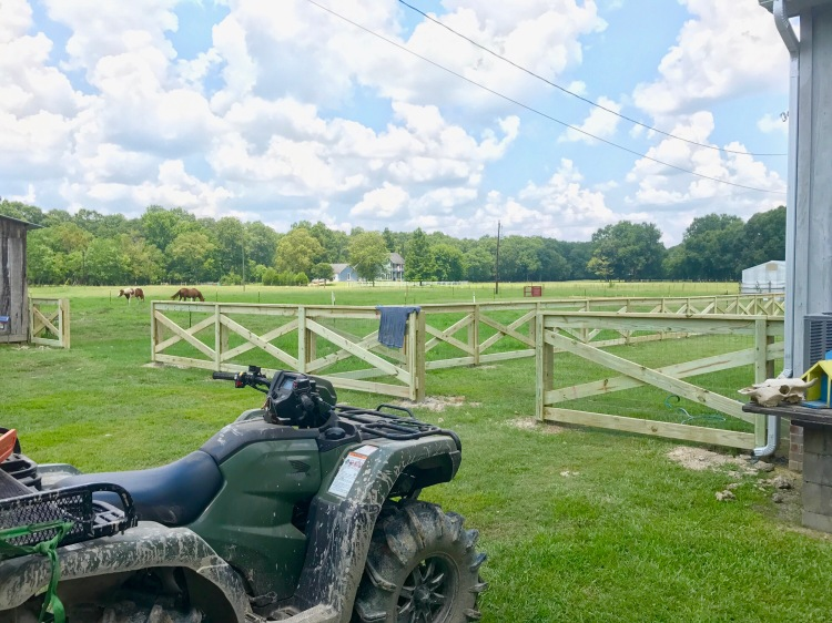 Day 4 Fence Progress