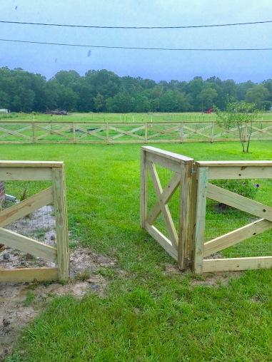 Day 5 Fence Progress 2