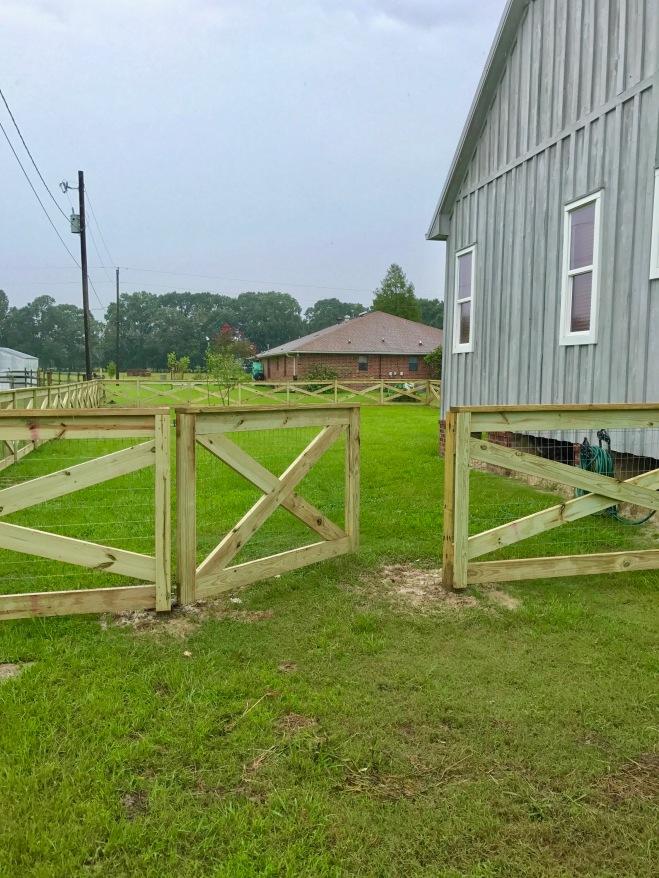 Day 5 Fence Progress 3