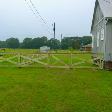 Day 5 Fence Progress 4