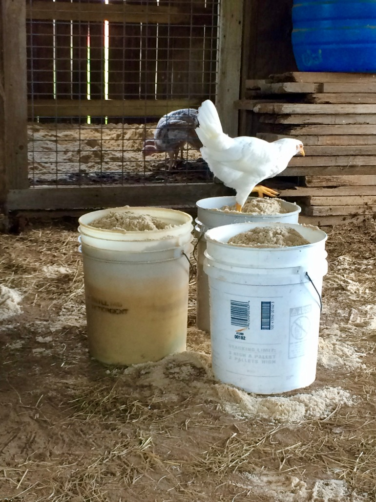 Keep you company 2