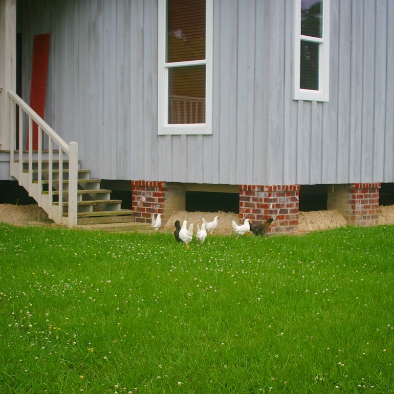 Mid morning meeting