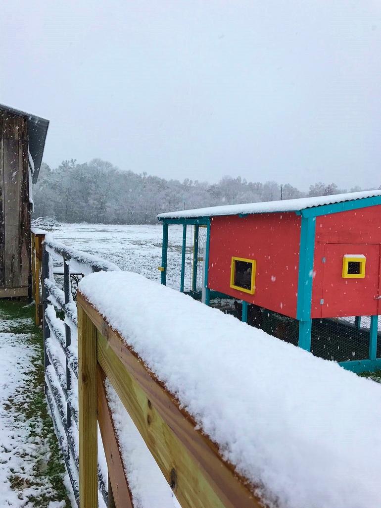 Barn & Coop & Fence