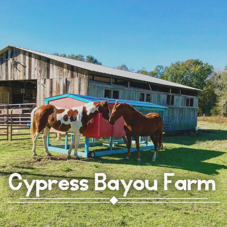 Cypress Bayou Farm