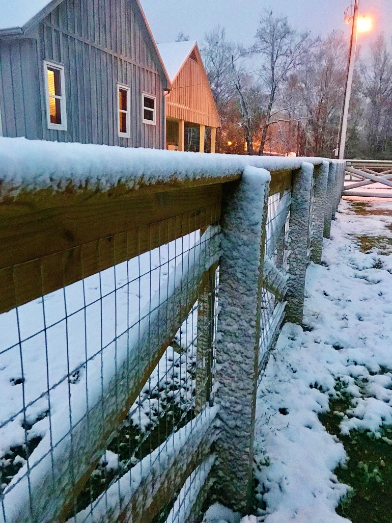 Fence line with snow