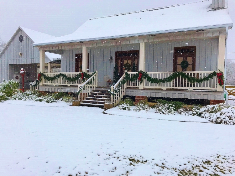House Front in Snow 2