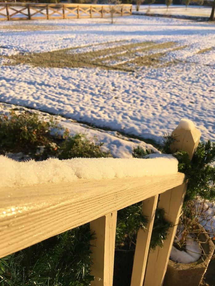 Snow on the railing