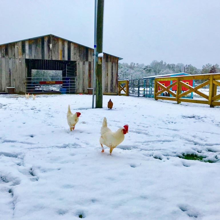 Spice Girls in Snow