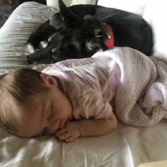 Lucy & Dixie 2