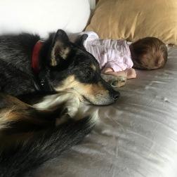 Lucy & Dixie